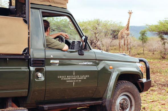 Explore and see animals on a game drive.